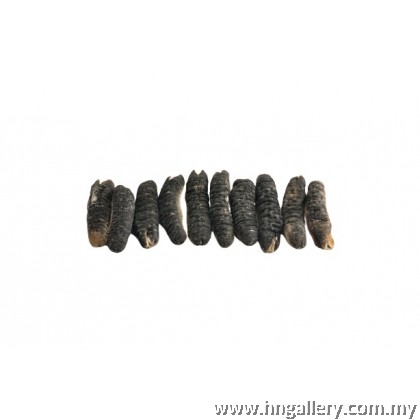 Premium Grade Dried Sea Cucumber (XL Size) (1X300G)